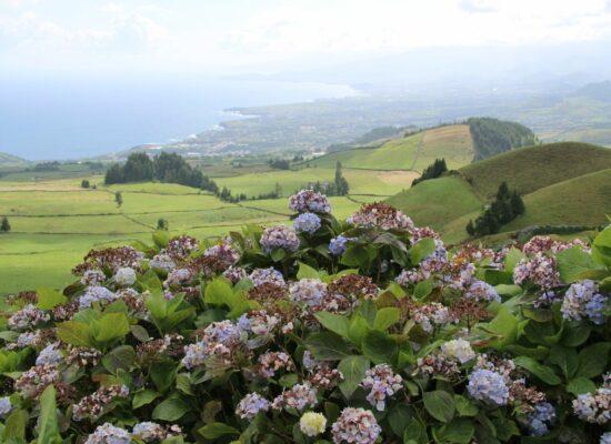 תכנון טיול בהתאמה אישית סאו מיגל Miradouro do Pico do Carvao האיים האזוריים