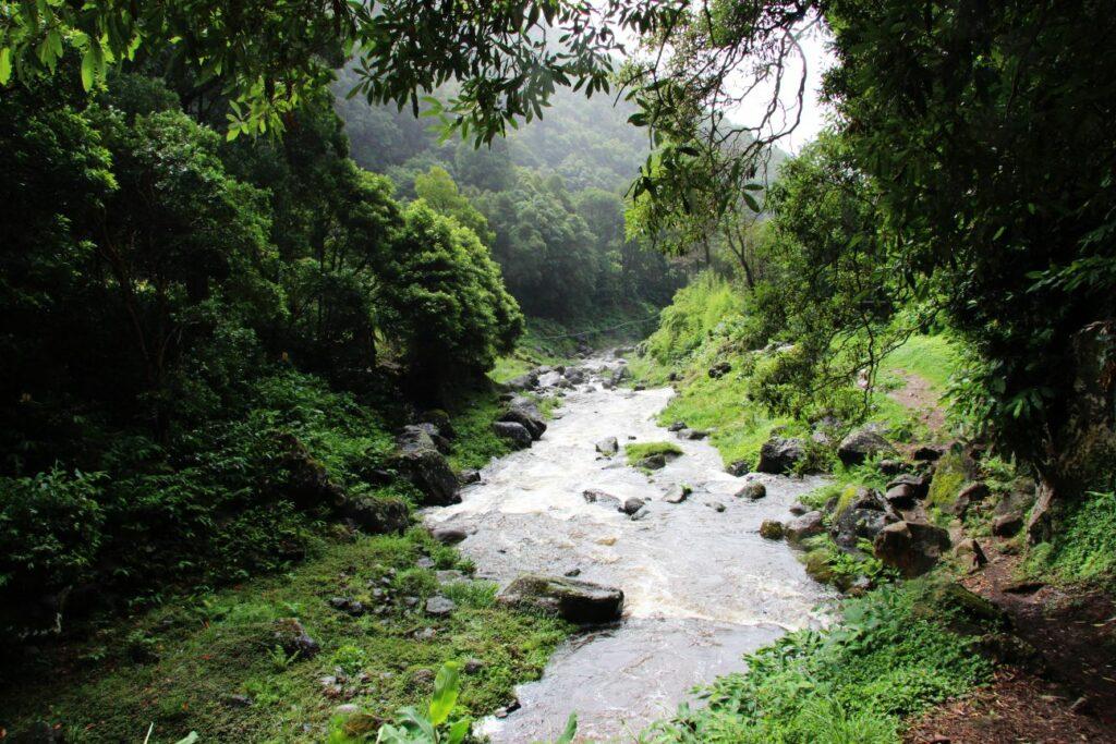 סאו מיגל Salto Do Prego האיים האזוריים sao miguel