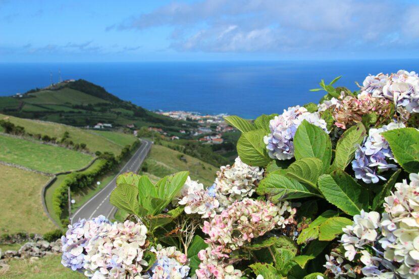 פלורס flores האיים האזוריים azores