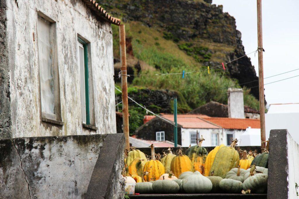 וילה דו קורבו האיים האזוריים azores corvo