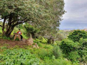 רמת הנדיב שמורה זכרון יעקב טיולי אופניים עם ילדים