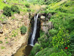 נחל ג'לבון רמת הגולן מסלולי טיול מומלצים למשפחות זרימה מפלים פריחה
