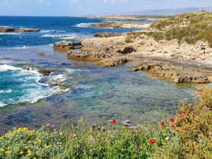 תל דור הבונים נחשולים חופים הכי יפים שמורות טבע