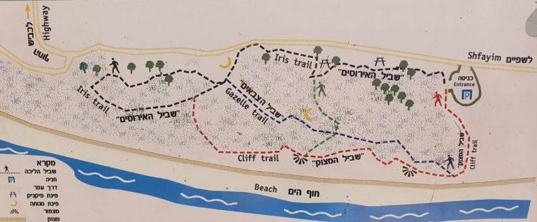 שמורת חוף השרון ים טורקיז ומצוקי כורכר
